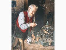 نخ و نقشه و مصالح بافت تابلو فرش طرح پیرمرد و گنجشک یا طوطی در قفس - کد 3301